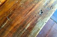Reboucher des trous de termites, pâtes à bois